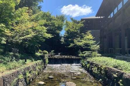 徳川園の龍門の瀧