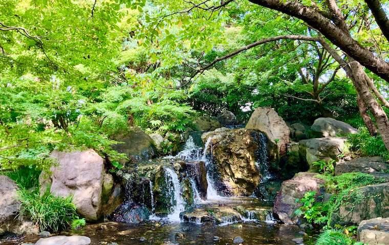 白鳥庭園の滝